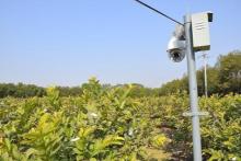 农业智能监控系统