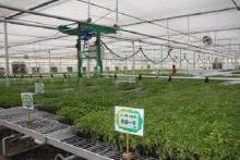 智慧农业解决方案是什么?