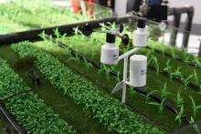 智能灌溉系统由什么组成?