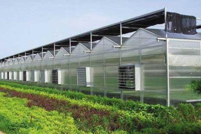 深圳清华研究院智能温室大棚环境监控系统项目