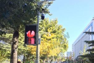 北京某智慧园区灯杆案例