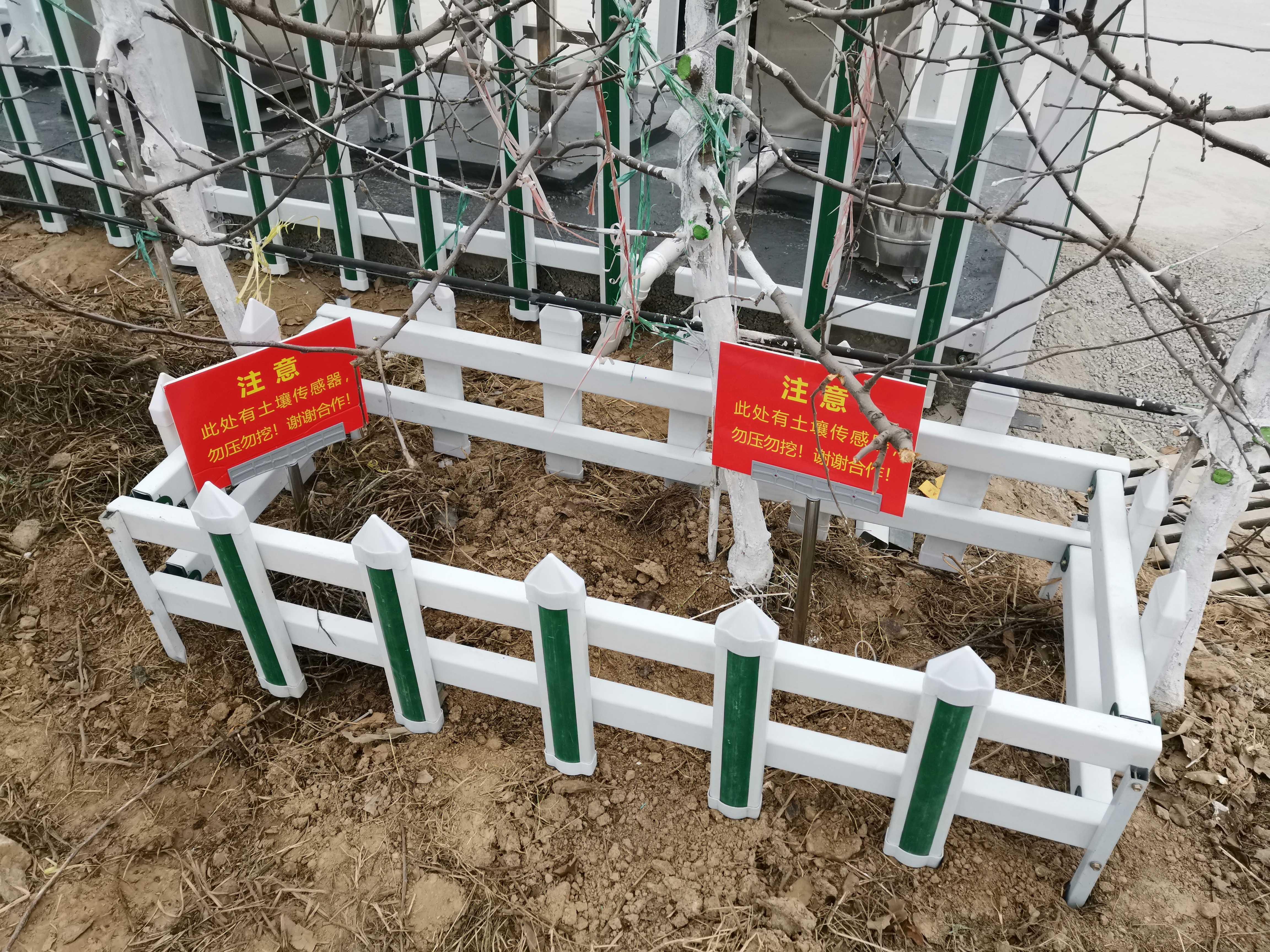 山东聊城生态果园四情监测项目